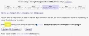 Как определить случайного победителя с помощью random.org - шаг 5