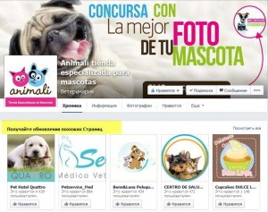 Новый дизайн бизнес страниц на Фейсбук - Рекомендуемые страницы