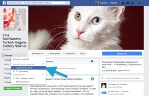 Приоритет в показе публикаций от страниц в Фейсбук