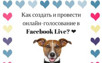 Как создать и провести онлайн-голосование в Facebook Live?
